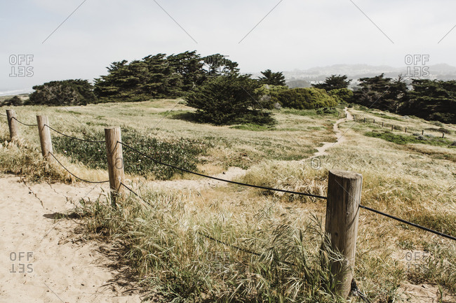 Fence and trail in the grassy and sandy dunes at Fort Funston in San Francisco