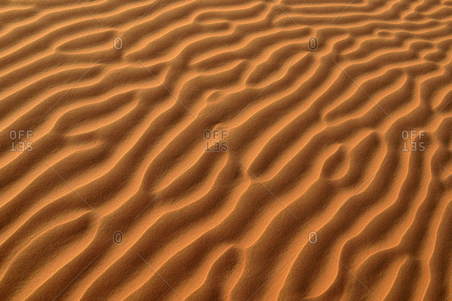 United Arab Emirates- Rub' al Khali- desert sand and ripple marks