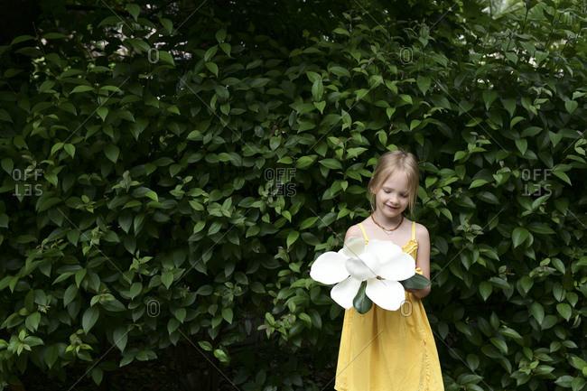 Smiling little girl with oversized white magnolia blossom