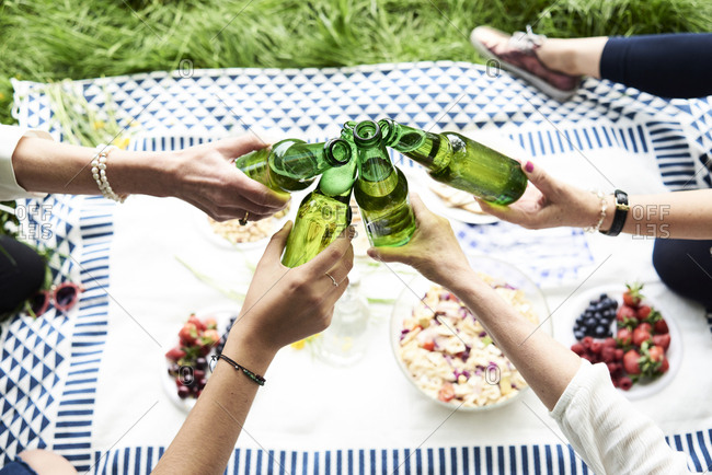 Top view of women clinking beer bottles at a picnic in park