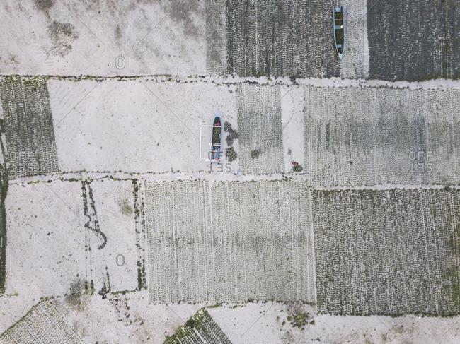 Indonesia- Sumbawa- Kertasari- seaweed plantation