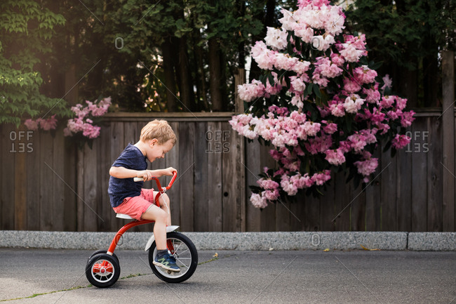Young boy rolling down the street on a red tricycle with a forest in the background.