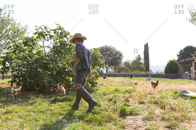 Side view of unrecognizable male teenager in straw hat and high boots walking on lawn near bush while taking care of hens on sunny day on farm