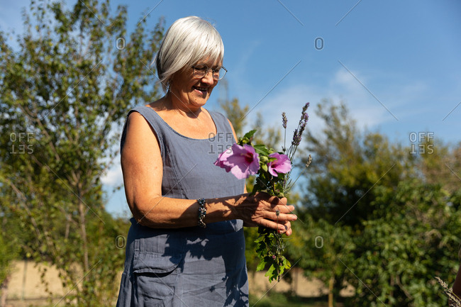 Senior woman picking beautiful flowers in garden on sunny day on farm