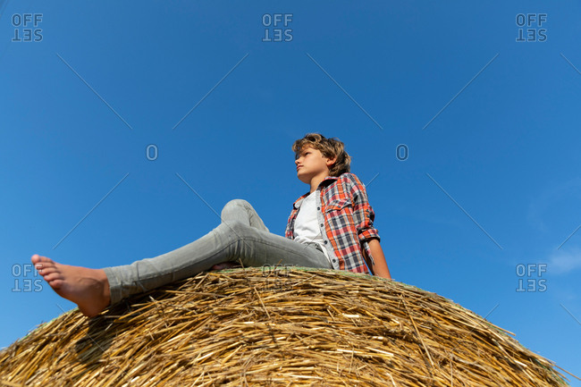 young boy looking at away while sitting on roll of dry grass against cloudless blue sky on sunny day on farm