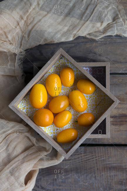 Composition of tropical kumquats placed in wooden boxes decorated by grey fabric on planks