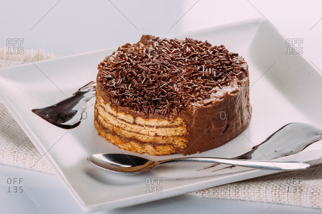 Appetizing chocolate cake ready to eat