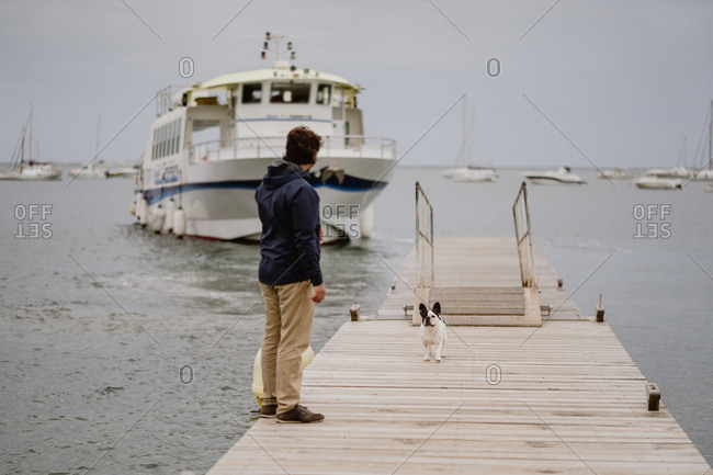back view of anonymous adult man in casual outfit spending time with French Bulldog on lumber pier near sea