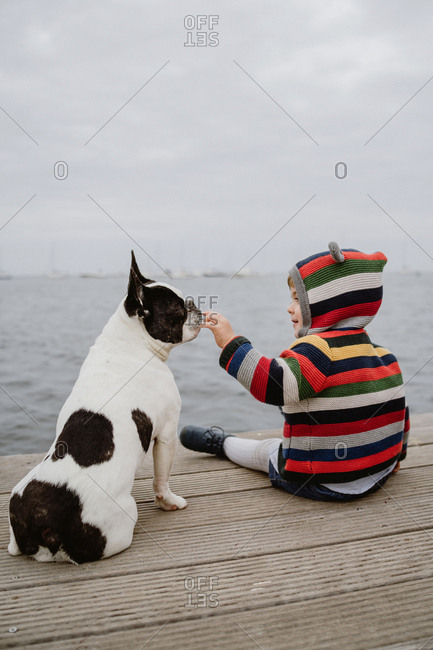 Back view of kid in striped jacket patting spotted French Bulldog while sitting on lumber pier near sea
