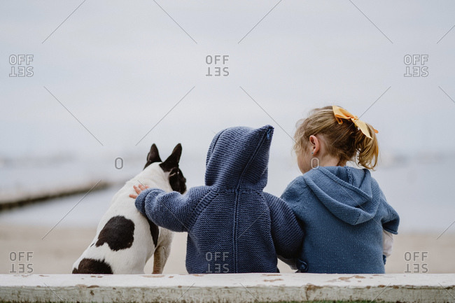 Back view of two children embracing French Bulldog while sitting on beach near sea together