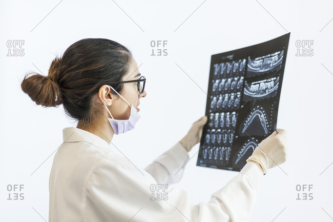 female dentist reviewing the patient's x-ray