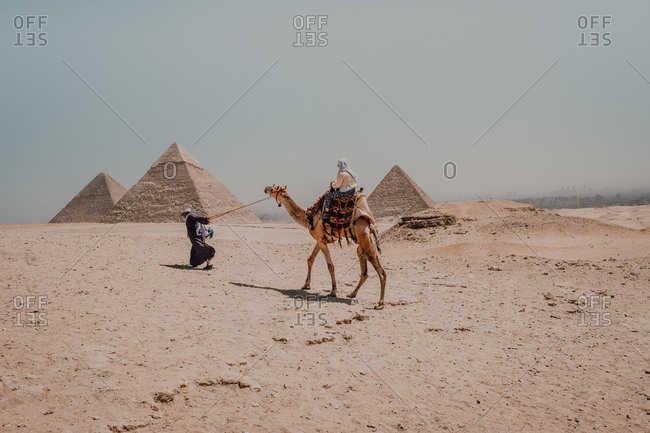 Two anonymous Arabs with camels walking in desert against famous Great Pyramids and gray sky in Cairo, Egypt