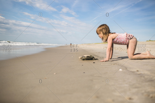5 year old girl on beach with sea turtle