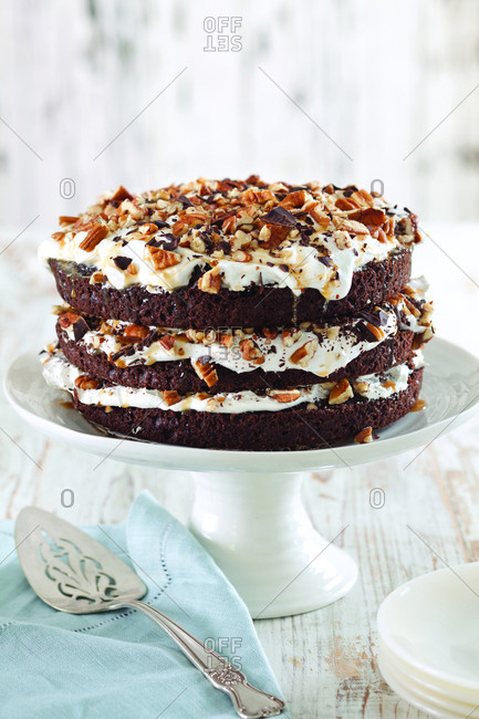 Chocolate layer cake garnished with nuts on cake stand at home
