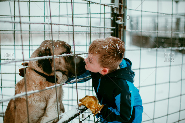 A boy petting a dog in the snow