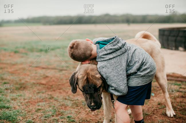 A boy hugging a large dog