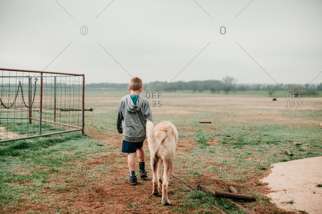 Rear view of a boy walking with a large dog