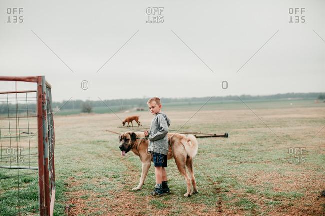 Boy walking with a large dog on a farm