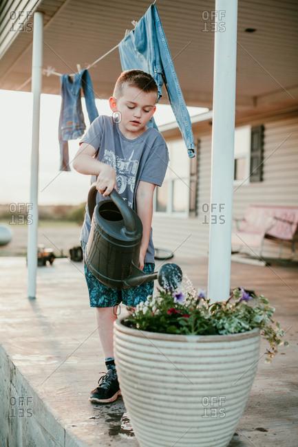 A boy watering flowers