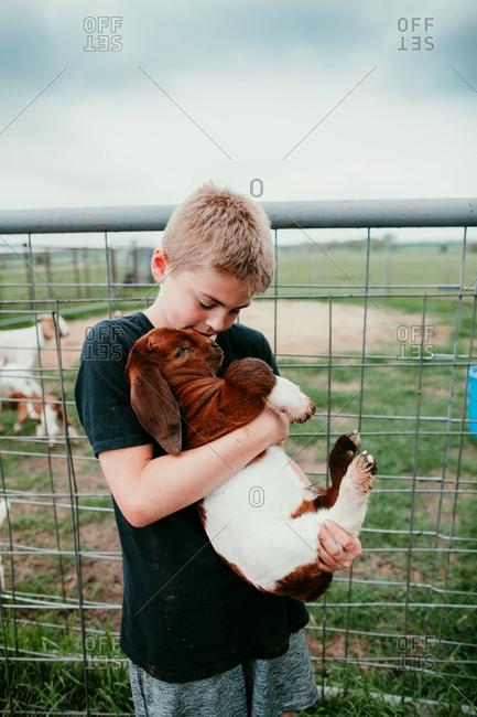 Boy holding a baby goat on a farm
