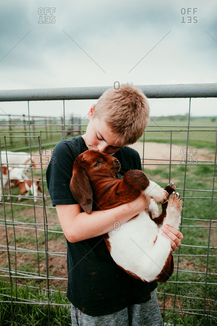 A boy kissing a young goat on a farm