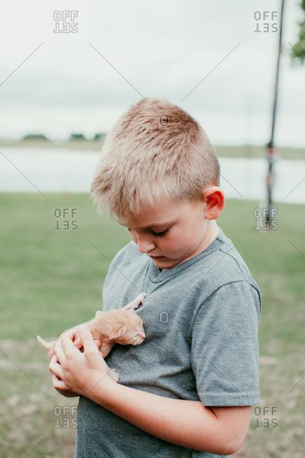 A boy holding a baby kitten