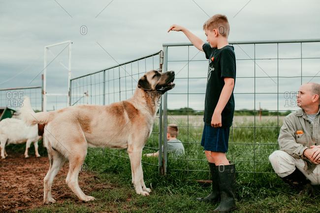 A boy playing with a dog on a farm