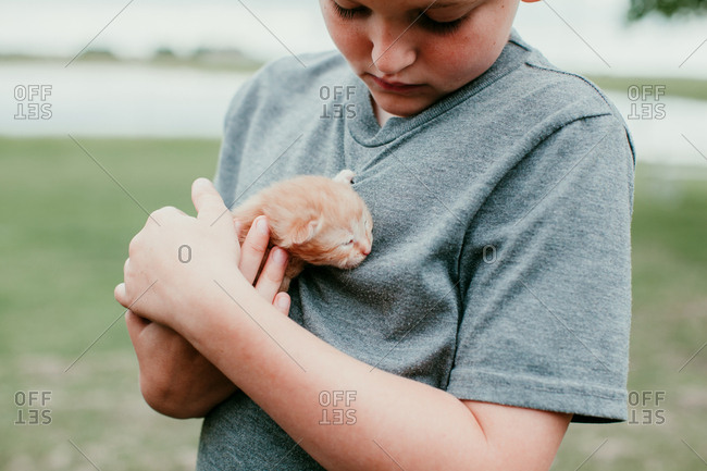 Close up of a boy holding a baby kitten