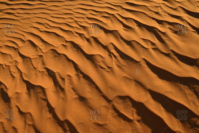 Africa- Algeria- Sahara- ripple marks- texture on a sanddune