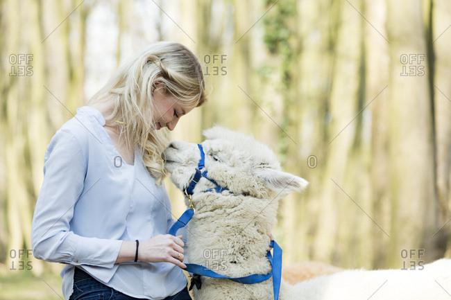 Happy woman cuddling white alpaca