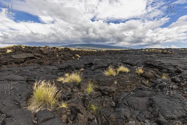 USA- Hawaii- Big Island- Kona- Kona- Mauna Loa volcano and lava field