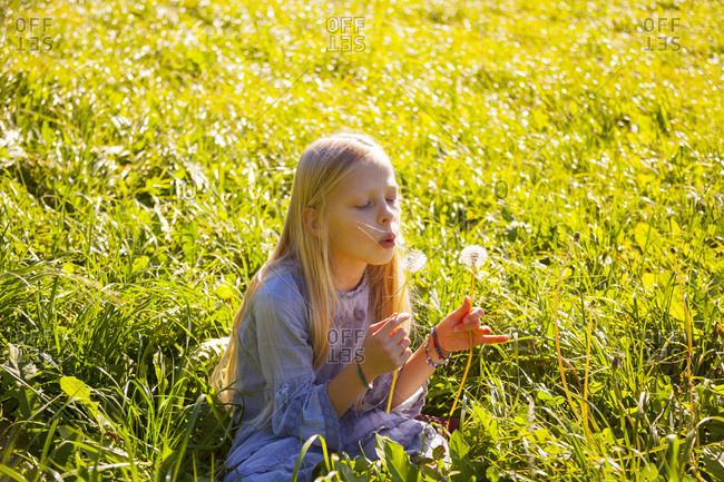 Girl sitting in field with blowball
