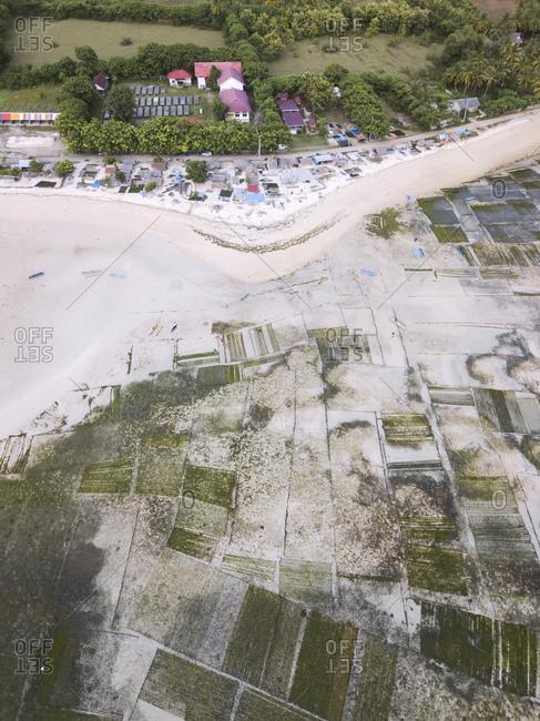 Indonesia- Sumbawa- Kertasari- Aerial view of seaweed plantation