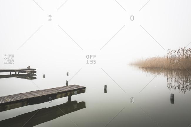 Germany- Brandenburg- Rangsdorfer See- pier and fog