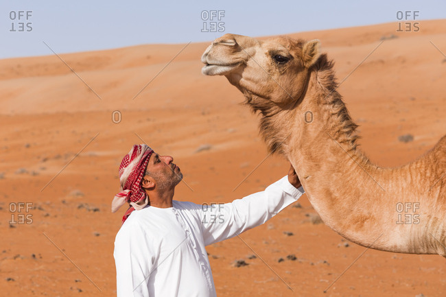 Bedouinn stroking his camel in the desert- Wahiba Sands- Oman