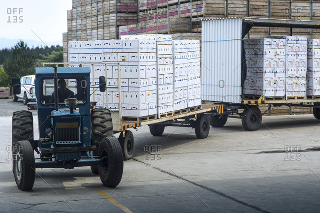 Tractor transporting produce in boxes on factory yard