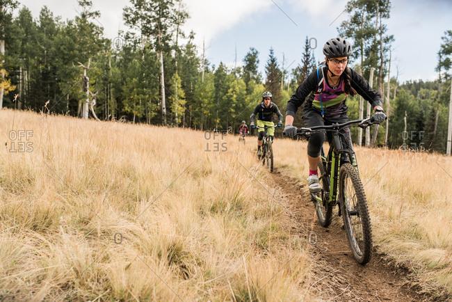 Friends riding mountain bikes on meadow trail