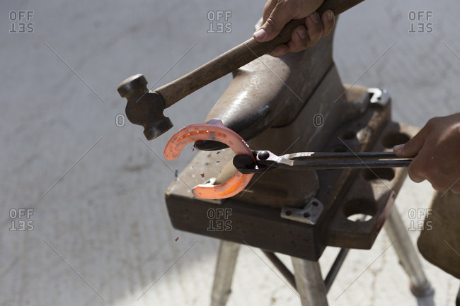 Farrier hammering a red hot horseshoe on an anvil