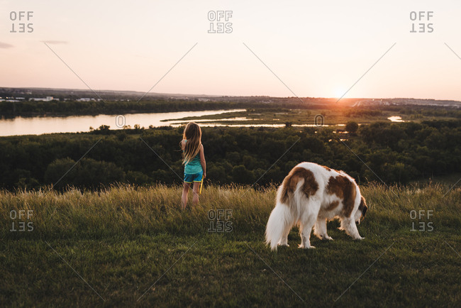 little girl watches sunset with saint bernard dog overlooking missouri river in bismarck north dakota