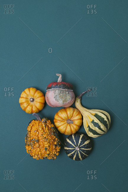 Decorated pumpkins and gourds in various colors on blue background