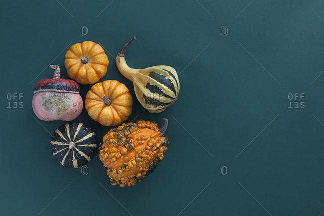 Decorative gourds and pumpkins in various colors
