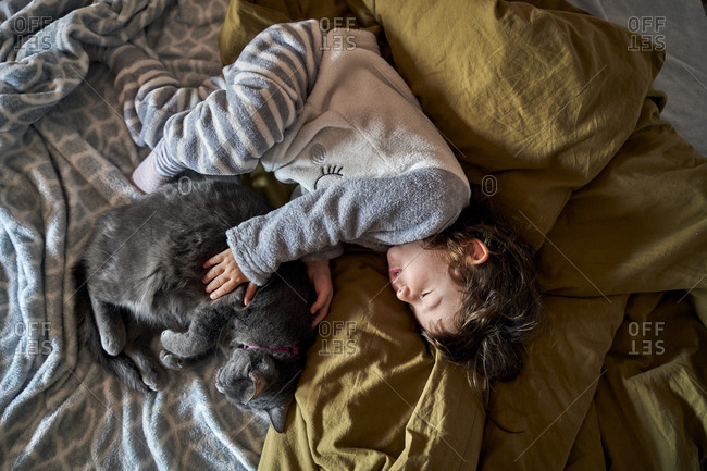 Toddler girl and grey cat sleeping on bed- top view