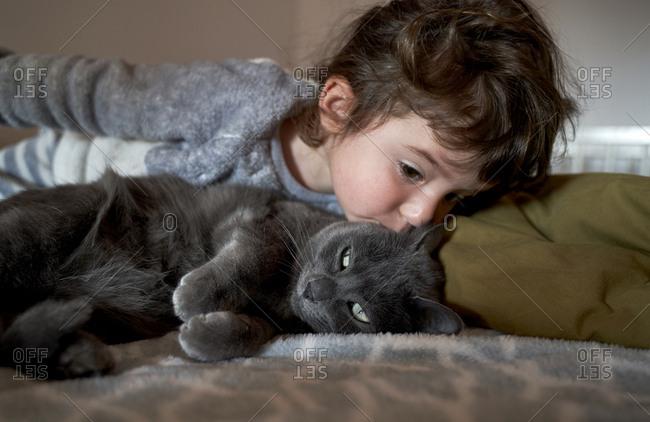 Toddler girl kissing grey cat lying on bed
