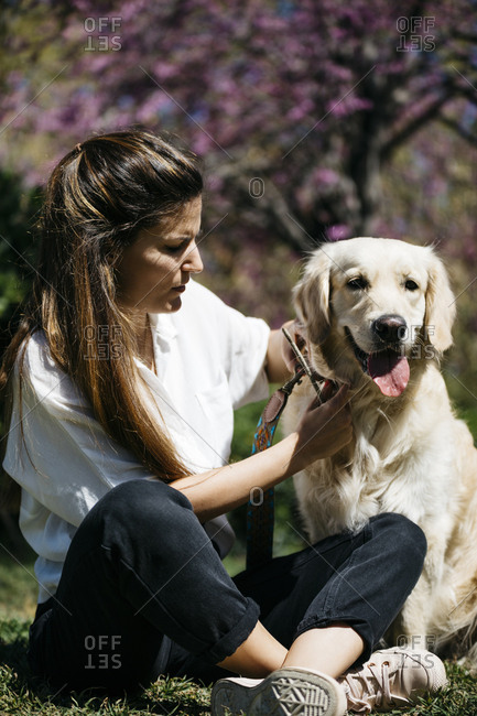 Woman and Labrador Retriever  sitting on meadow in city park