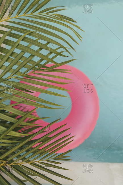 Palm leaf and pink inflatable ring in swimming pool