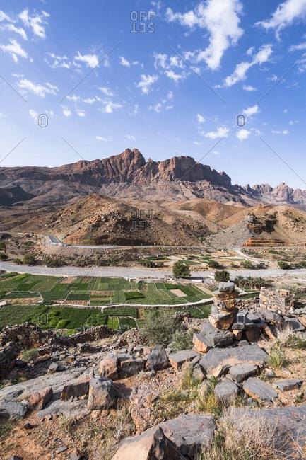 Fields of Al Hamra- Ad Dakhiliyah- Oman