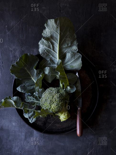 Homegrown broccoli set on a dark plate