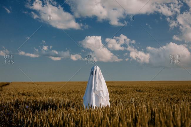 cute ghost in a bed sheet on a wheat field