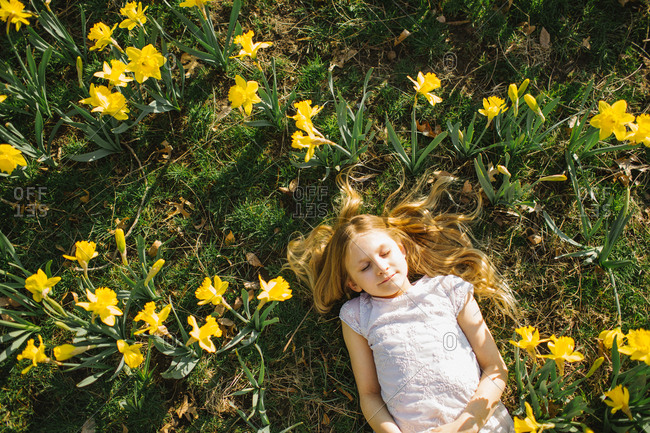 Overhead view of blonde girl lying in a field of yellow flowers