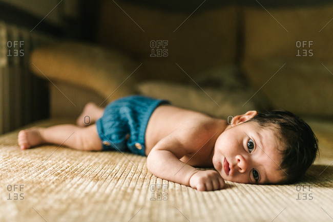 Cute little innocent newborn baby in back lying on sofa at home